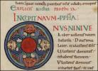 P. 181 f. 242