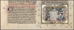 P. 521 f. 260