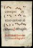 P. 75 f. v